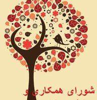 فعالیت های شورای همکاری ها و ائتلاف اسلامی زنان
